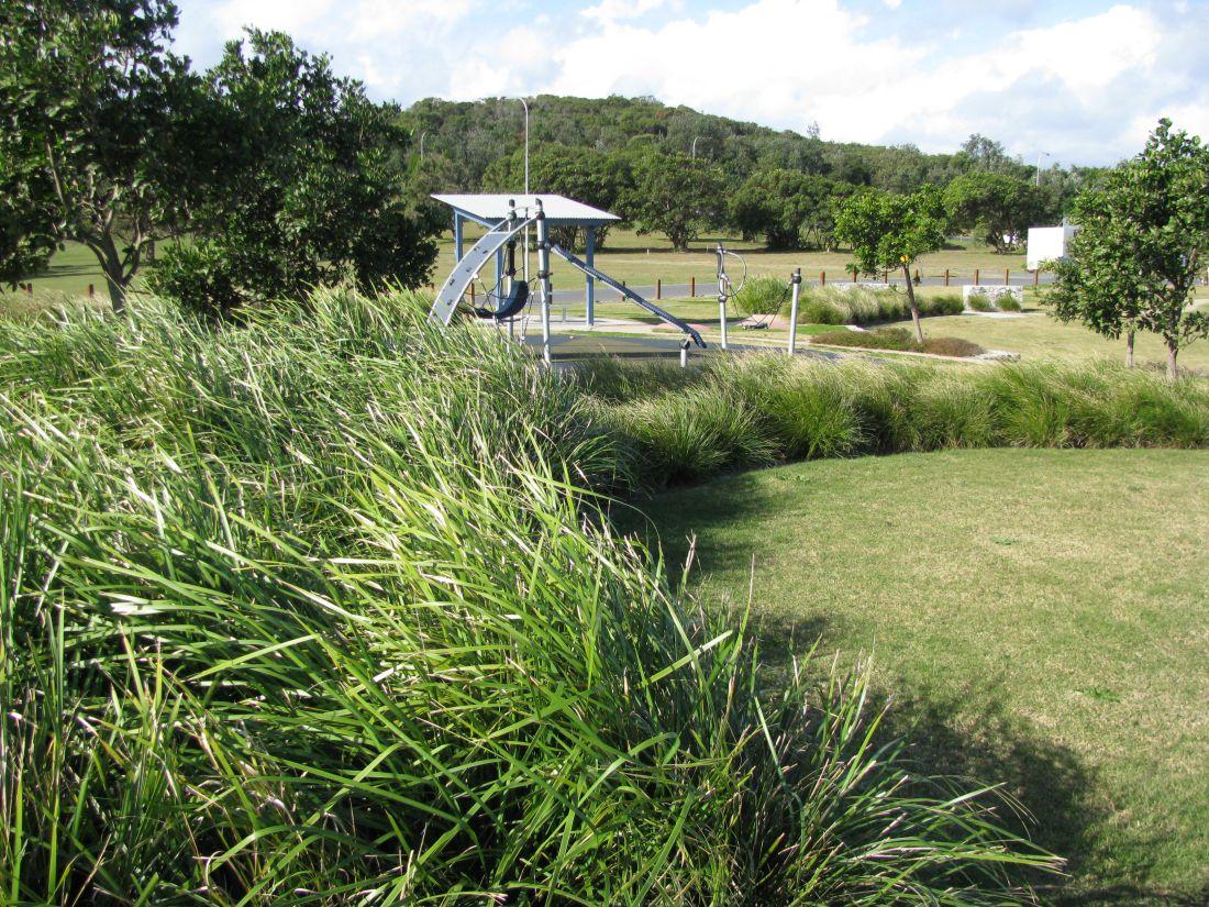Angels Beach Ballina Landscape Architecture