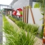 Tweed Heads GP Superclinic Landscape Design