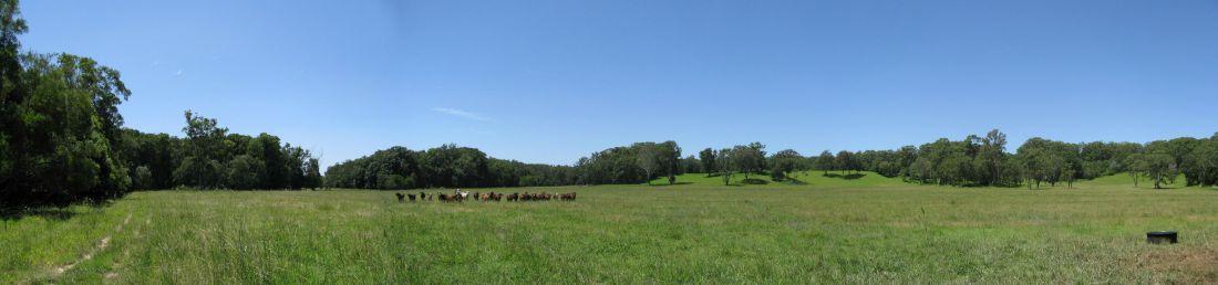 North Byron Parklands Cultural Events Site